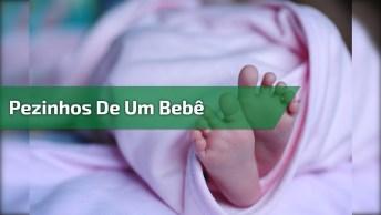 Pezinhos De Um Bebê, Os Pezinhos Mais Fofos Que Você Vai Ver Hoje!