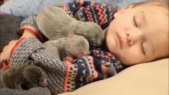 Soninho De Bebê Tranquilo E Gostoso, Tem Como Não Se Apaixonar?