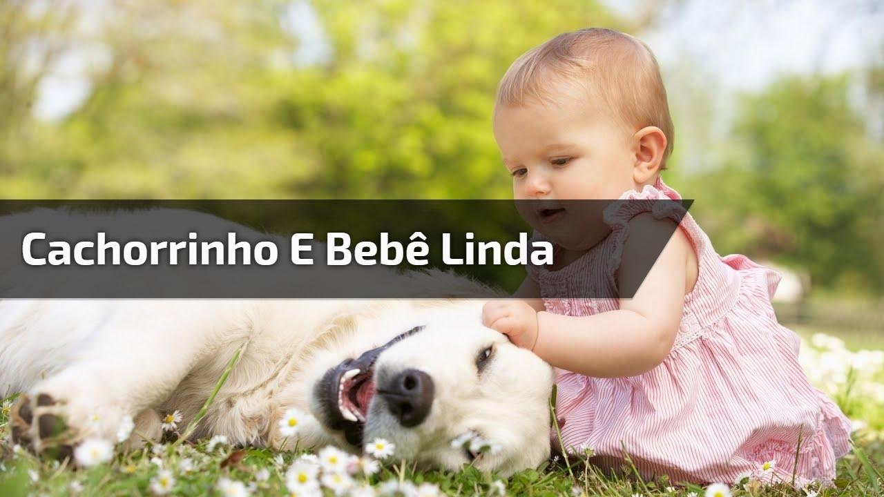 Cachorrinho e bebê linda