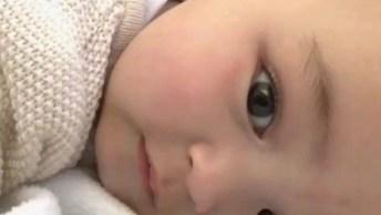 Video De Bebê Fofo, Tem Como Resistir Com Tanta Fofura? Confira!