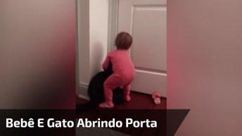 Bebê E Gato Abrindo Uma Porta, Que Dupla Incrível Hein!