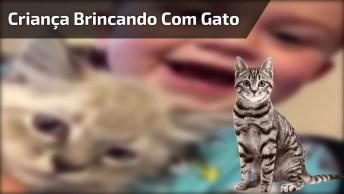 Criança Brincando Com Gato De Miar, Muito Fofo, Confira!