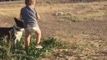 Criança Brincando De Jogar Bola Pro Cachorro De Uma Maneira Divertida!