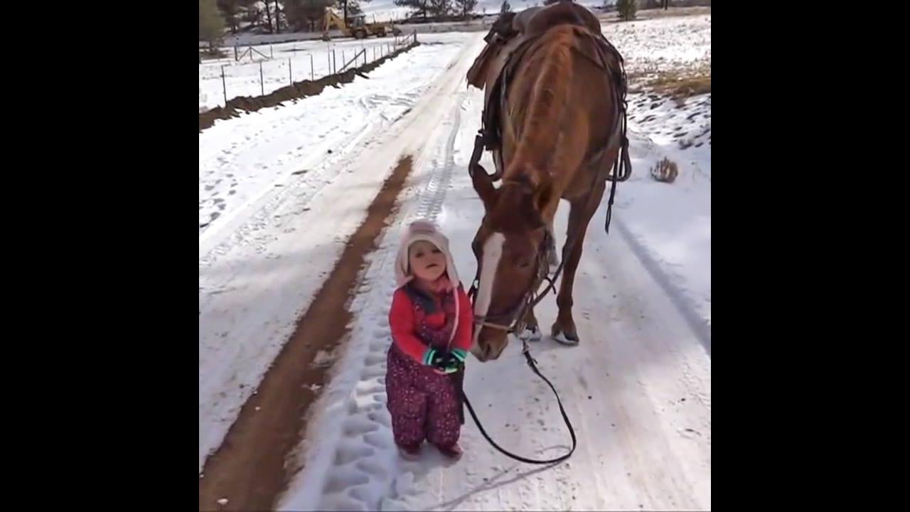 Criança brincando de puxar um cavalo