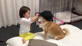 Criança Coloca Boné Em Cachorro E Dá Muitas Risadas Hahaha!