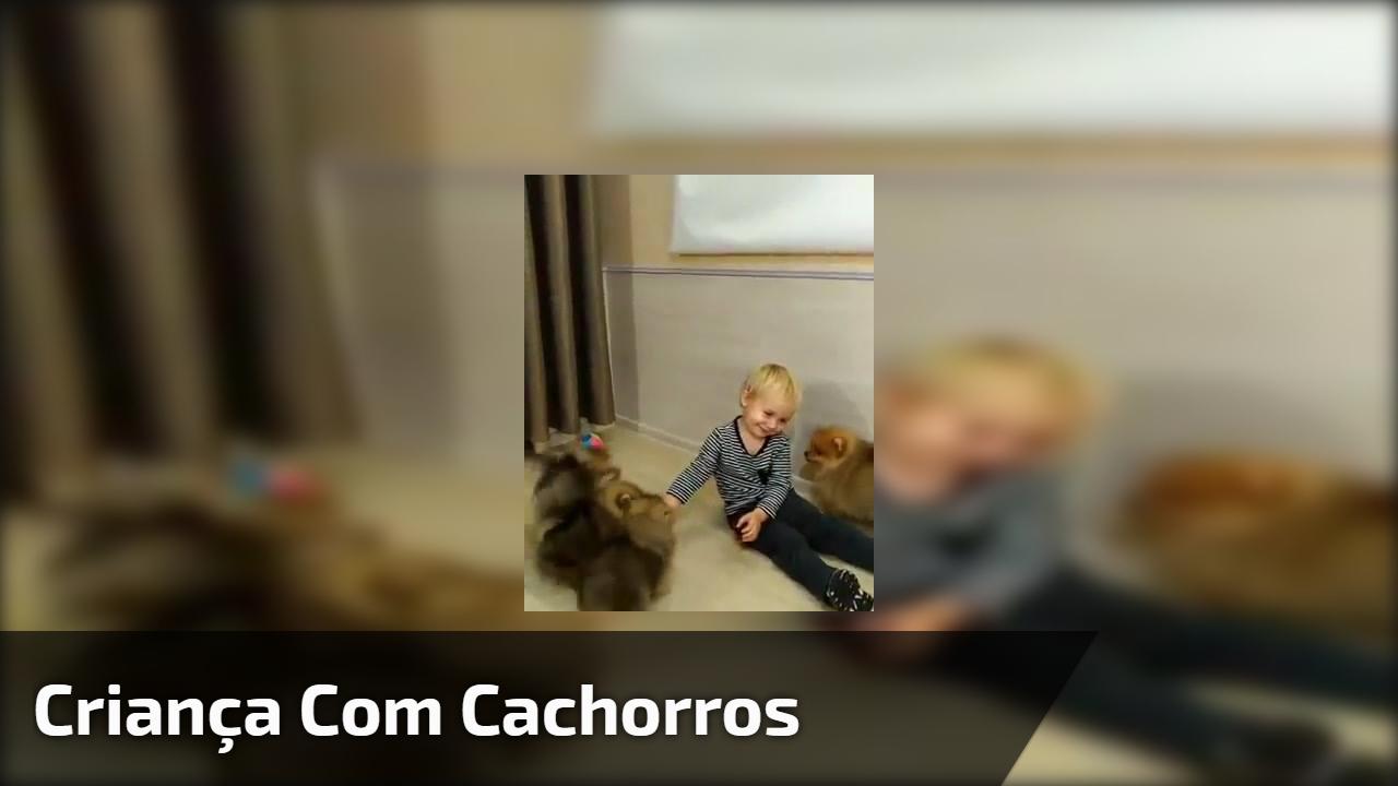 Criança com cachorros