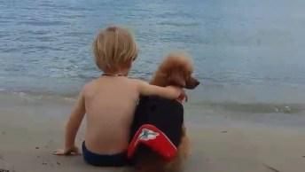 Criança Fofa Curtindo A Praia Com Seu Melhor Amigo, O Cachorro!