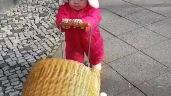Criança Pequena Carregando Seu Coelhinho De Pelúcia, É Muito Fofa!