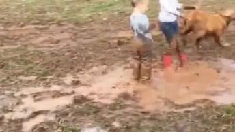 Crianças Brincando Com O Cachorro Na Lama, Que Bagunça Hein!