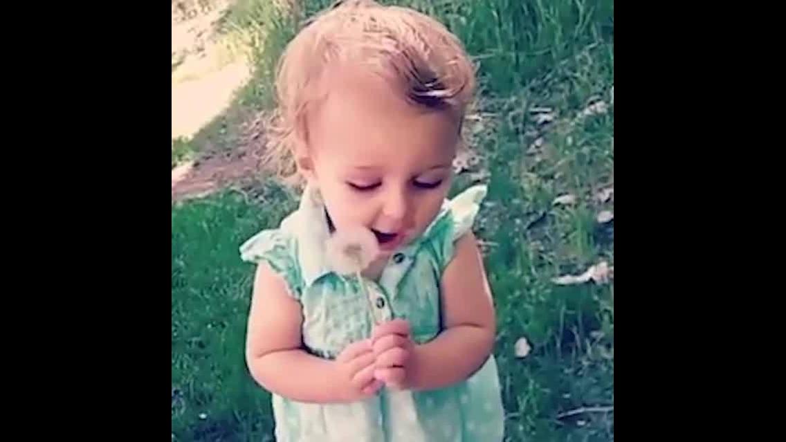 Crianças com planta dente-de-leão nas mãos