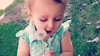 Crianças Com Planta Dente-De-Leão Nas Mãos, O Que Eles Fazem?