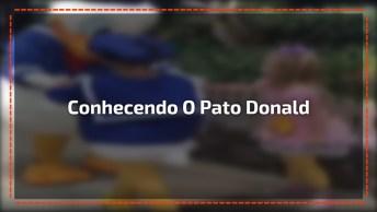 Crianças Conhecendo O Pato Donald, Olha Só Que Amor Gente!