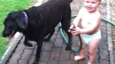 Crianças Dando Risadas Com Seus Cachorrinhos De Estimação!