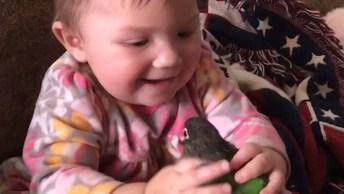Crianças E As Situações Mais Engraçadas Com Aves, Para Rir Muito!