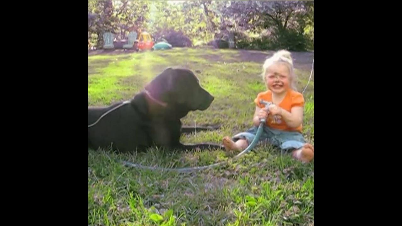 Crianças e seus animais de estimação