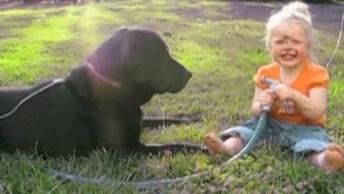 Crianças E Seus Animais De Estimação, Ou Melhor, Seus Melhores Amigos!