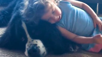Crianças E Seus Melhores Amigos, Os Cachorros, Cenas A Seguir Muito Fofas!