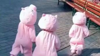 Crianças Fantasiadas De 3 Porquinhos, Olha Só Que Engraçadinho!