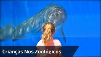 Crianças Se Assustando Em Zoológicos, Olha Só Estas Situações Engraçadas!