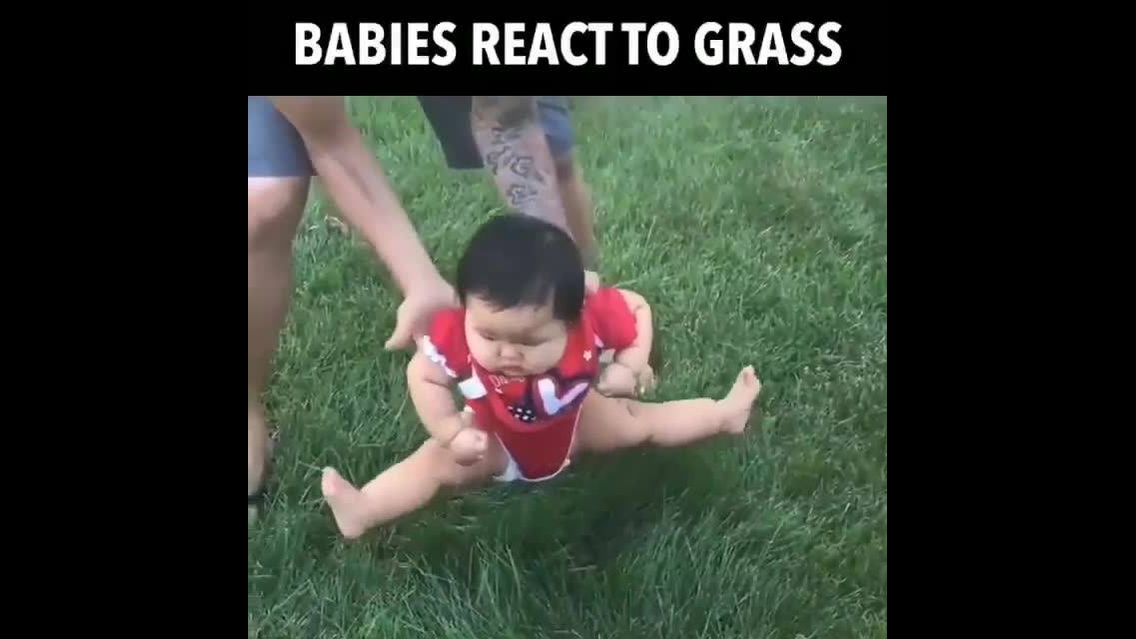 Crianças tendo contato com grama pela primeira vez