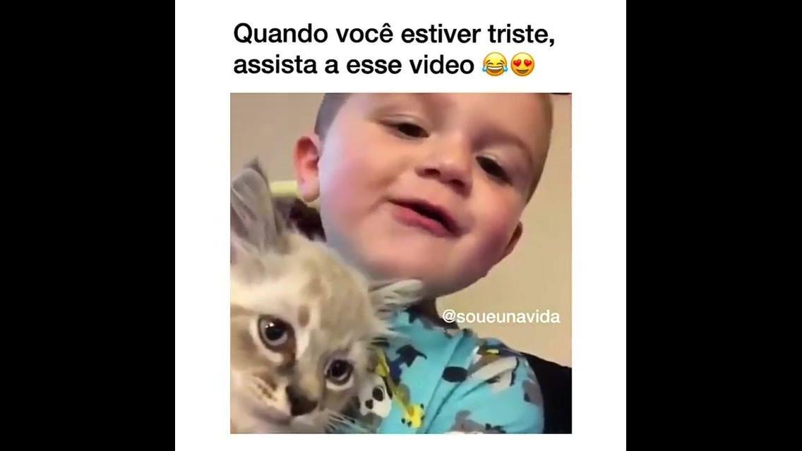 Garotinho brincando com gatinho