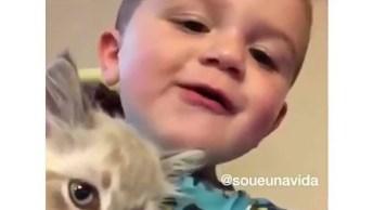 Garotinho Brincando Com Gatinho, O Vídeo Mais Fofinho Que Você Verá Hoje!