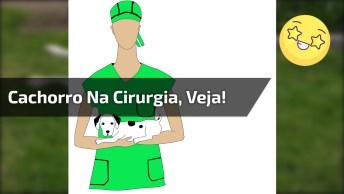 Menina Brincando De Fazer 'Cirurgia' Em Seu Cachorro, Ele Fica Bem Quietinho!