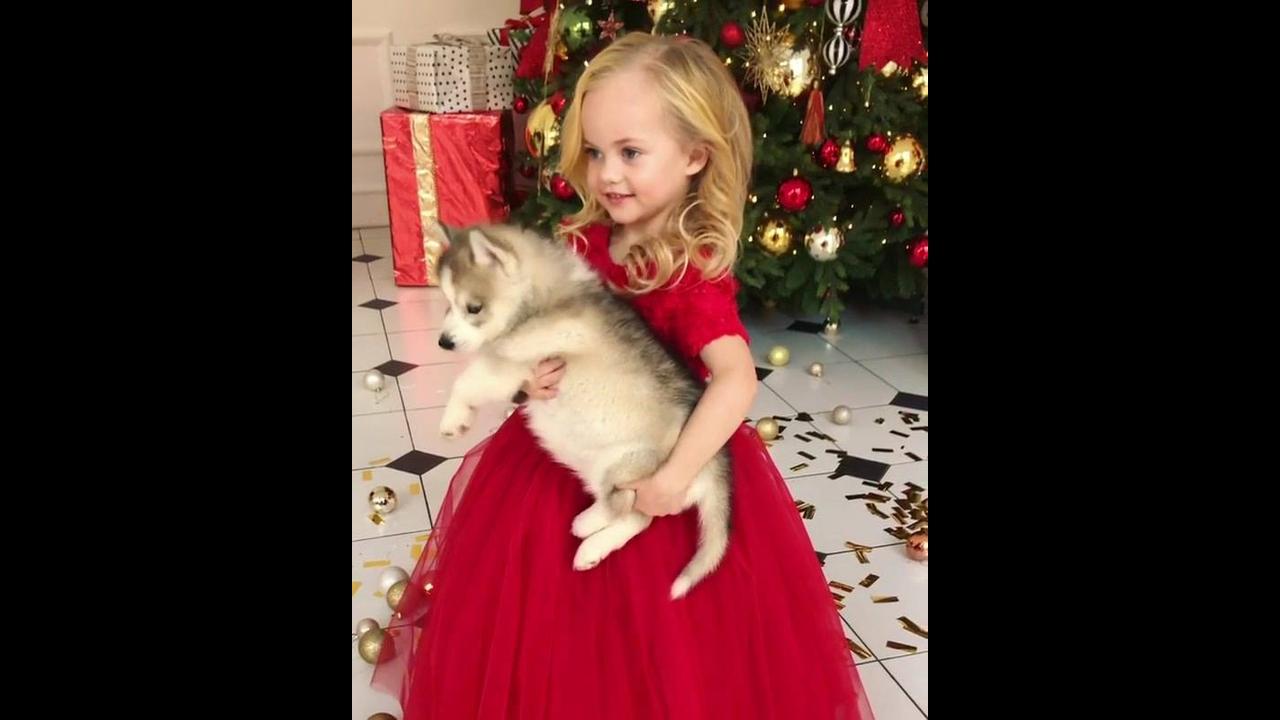 Menina com vestido vermelho e cachorrinho no colo