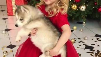 Menina Com Vestido Vermelho E Cachorrinho No Colo, Ela É Muito Linda!