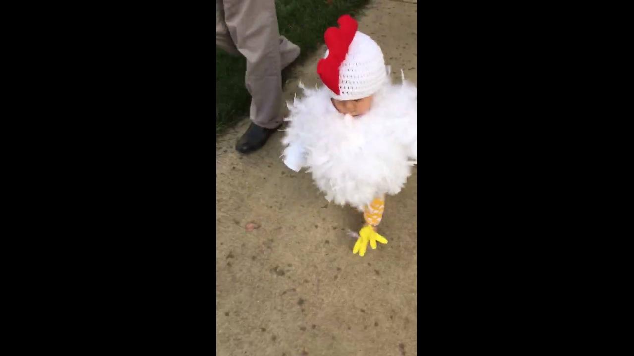 Que galinha mais fofinha, kkk!