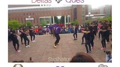 Apresentação De Uma Universidade Americana, Essa Galera Dança Muito!