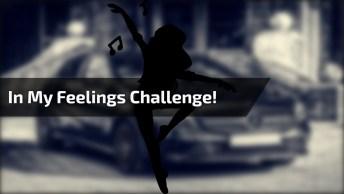 Dança Na Porta Do Carro Com Banda - Melhor In My Feelings Challenge!