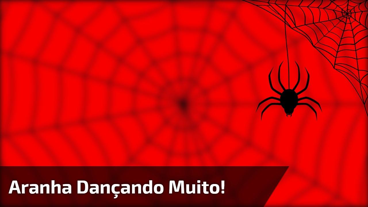 Aranha dançando muito!
