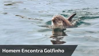 Homem Encontra Golfinho Preso Em Rede E O Ajuda A Voltar Para O Mar!