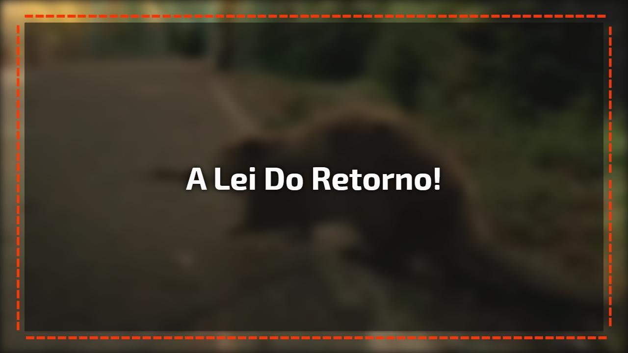 A lei do retorno!