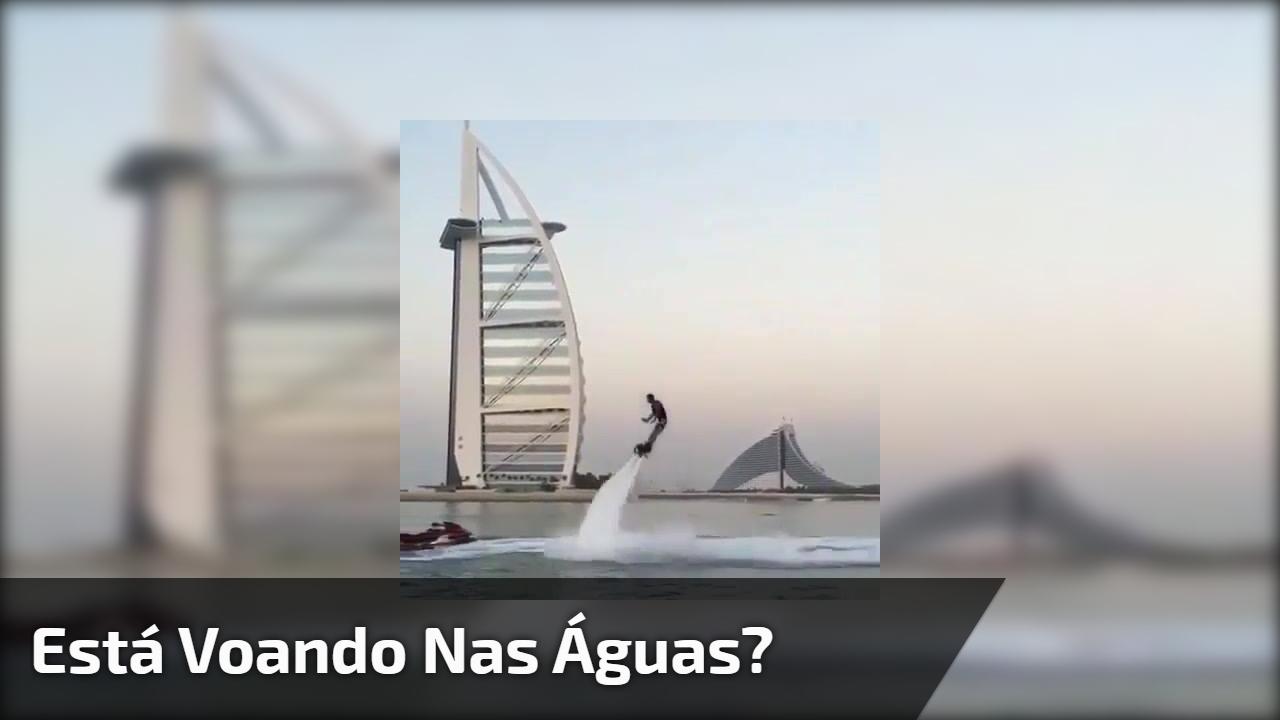 Está voando nas águas?