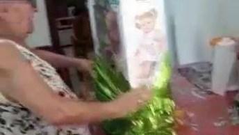Avó Ganha Uma Boneca, Veja Como Ela Reage, Que Emoção!