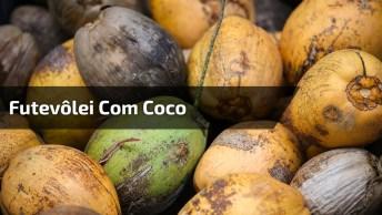 Futevôlei Com Coco, Essa É Só Para Os Fortes, Confira E Compartilhe!