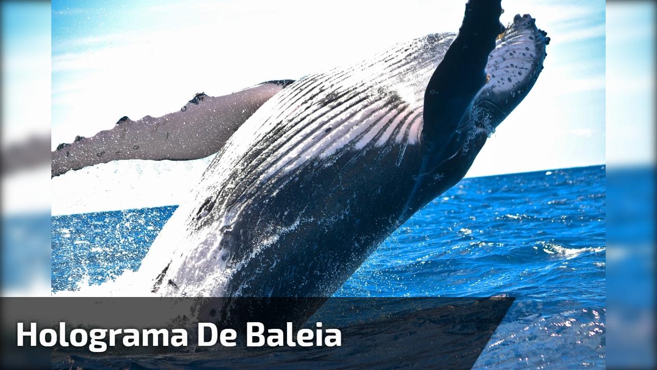 Holograma de Baleia