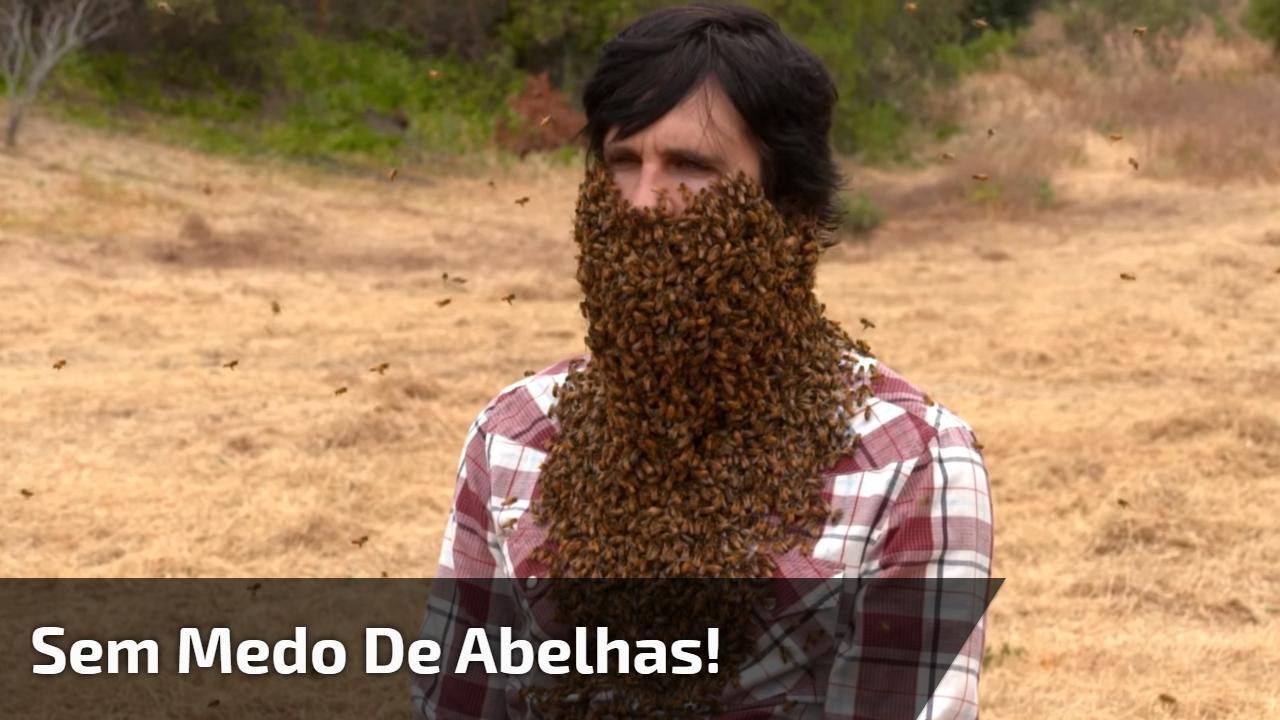 Sem medo de abelhas!
