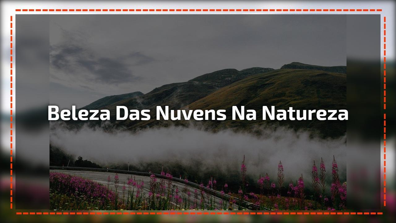 Imagens impressionantes da natureza, veja o video e se surpreenda!