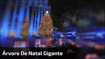 Impressionante Árvore De Natal Gigante Que Apagada Fica Verde!