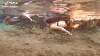 Impressionantes Sereias Nadando, Uma Profissão Que Só Vem Crescendo!