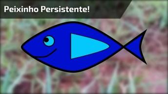 Peixinho Persistente Vai Rastejando Até Chegar Na Água, Um Exemplo!