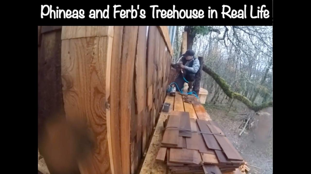 Vídeo com impressionante construção de casa na arvore