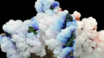 Arvore Crescem Papelão Crescem Com Experiência De Evaporação E Sal Cristalizado!