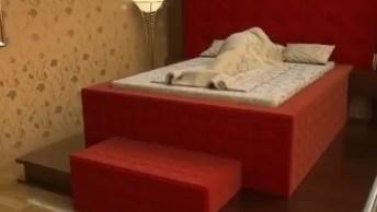 Cama Segura Ou 'Safe Bed' Pode Salvar Vidas Em Casos De Desmoronamentos!