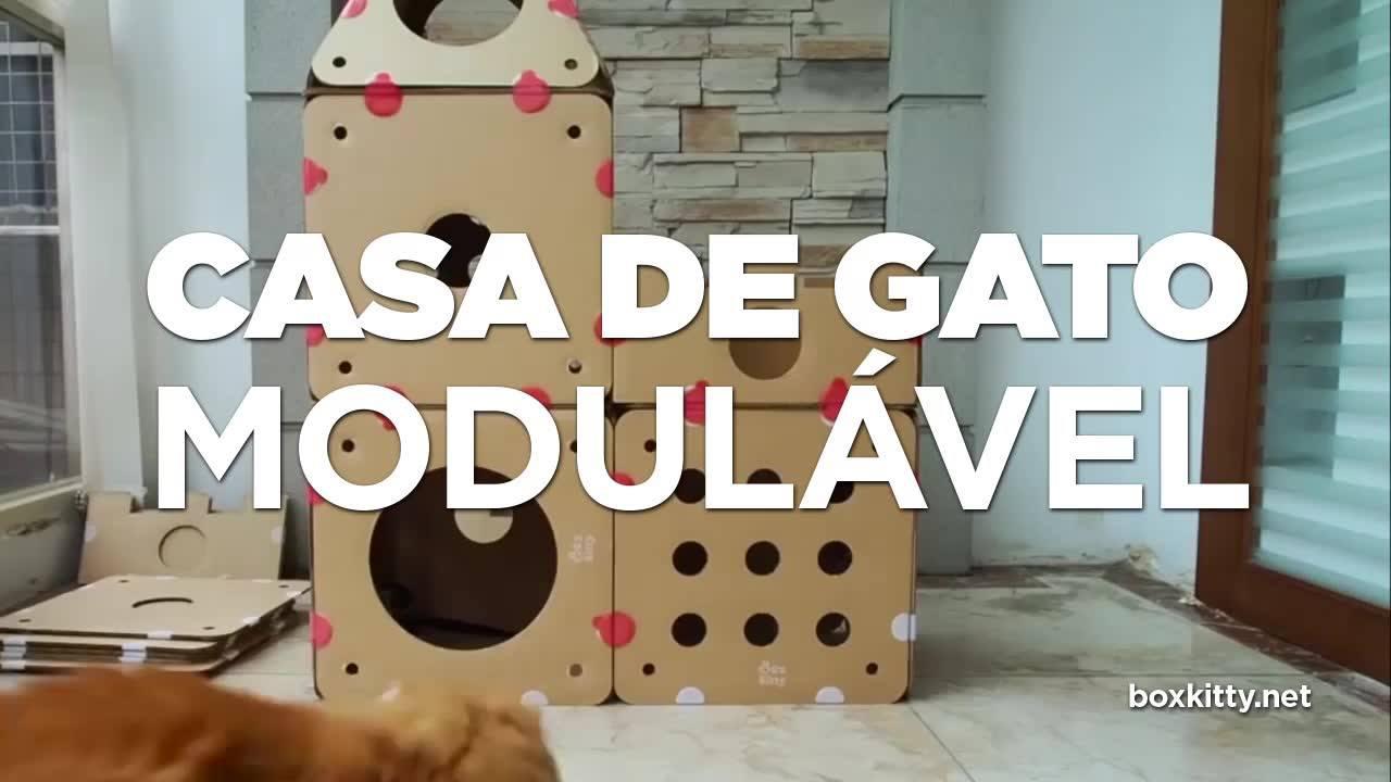 Como fazer uma casa de Gato modulável