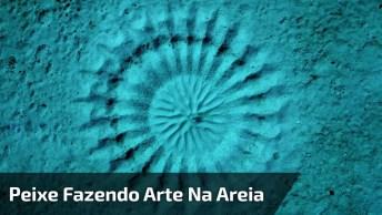 Peixe Reproduz 'Escultura' Em Areia, Impressionante Sua Habilidade!