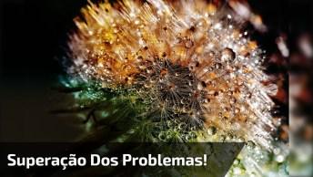 Vídeo Com Linda Mensagem Sobre Humildade Perante Todos Problemas!